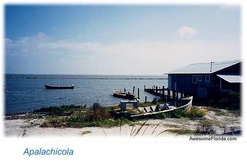 Apalachicola Big on Lake George Island Map