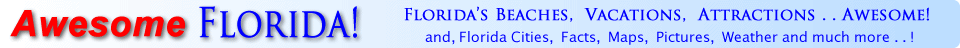 Awesome Florida.com