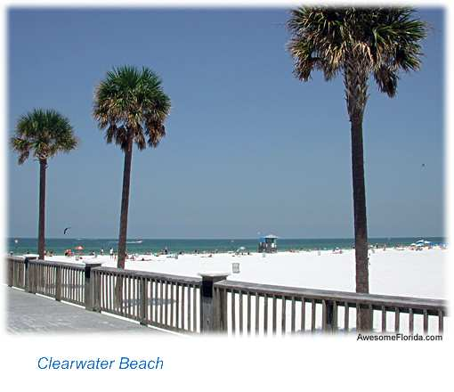 clearwater florida vacation and beach guide clearwater beach 510x440
