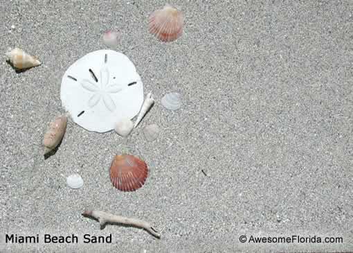 Florida Beach Sand on panama city beach maps and hotels